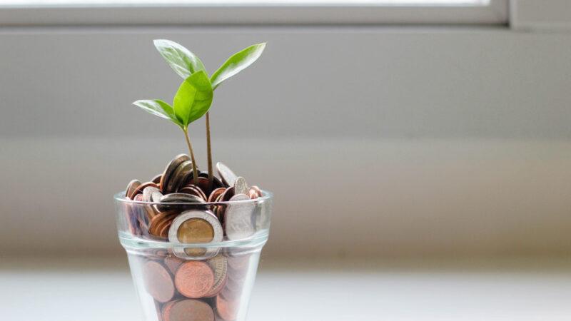 Investopedia Brown